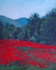 Field-of-Poppies-V